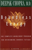 Knjiga u ponudi Boundless Energy
